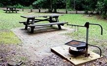 Bellbird campground - Melbourne Tourism