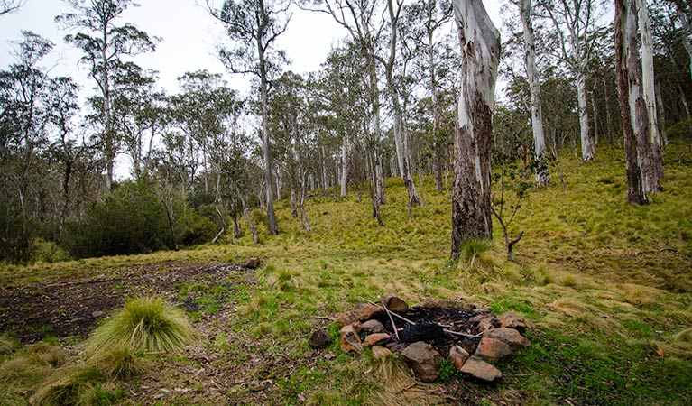 Gummi Falls campground - Melbourne Tourism