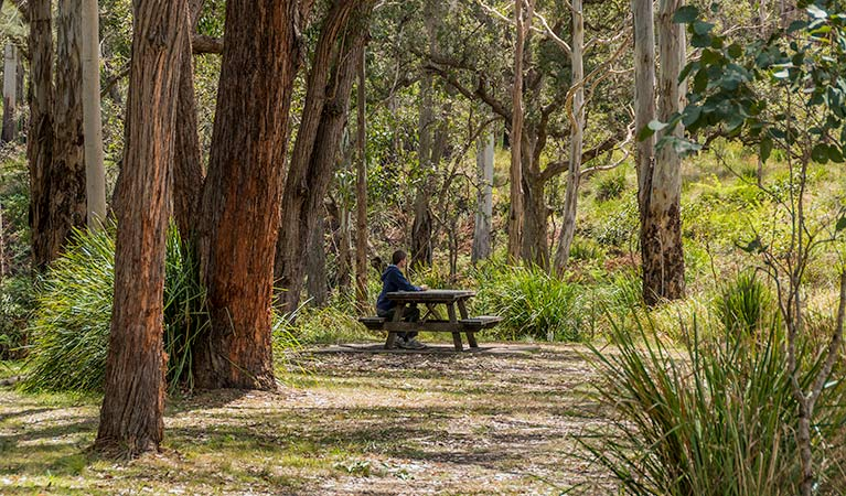 Koreelah Creek campground - Melbourne Tourism