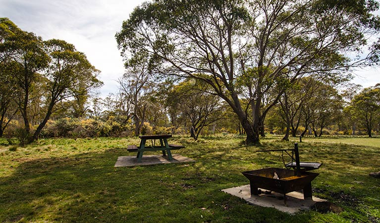 Little Murray campground - Melbourne Tourism