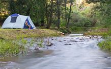 Nymboida Camping  Canoeing - Melbourne Tourism