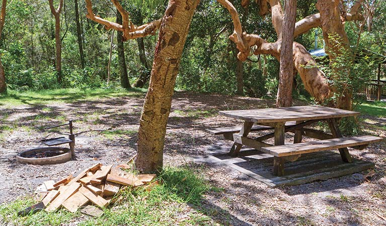 Station Creek campground - Melbourne Tourism