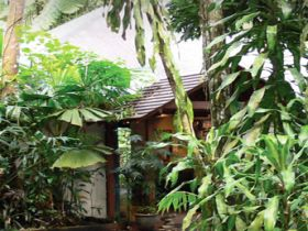 Heritage Lodge and Spa - In the Daintree - Melbourne Tourism