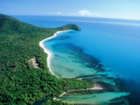 Cape Tribulation Camping - Melbourne Tourism