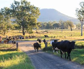 Tommerups Dairy Farmstay - Melbourne Tourism