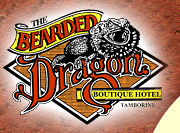 The Bearded Dragon Hotel - Melbourne Tourism