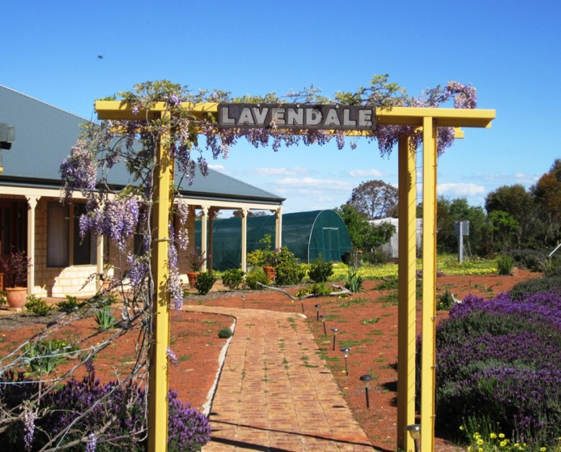 Lavendale Farmstay and Cottages - Melbourne Tourism