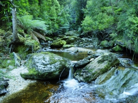 Tarkine Wilderness Experience at Corinna - Melbourne Tourism