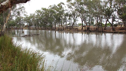 Riverbank Caravan Park - Melbourne Tourism