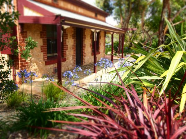 The Creek Cottage - Melbourne Tourism