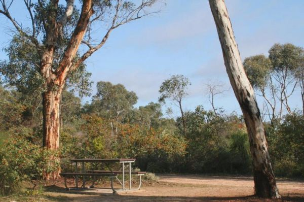 Drummonds Camp at Avon Valley National Park - Melbourne Tourism
