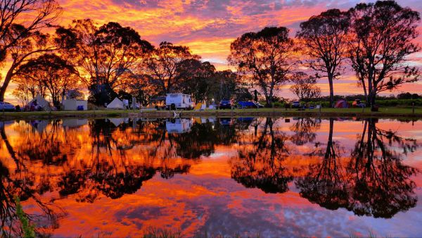 Coonawarra Bush Holiday Park - Melbourne Tourism