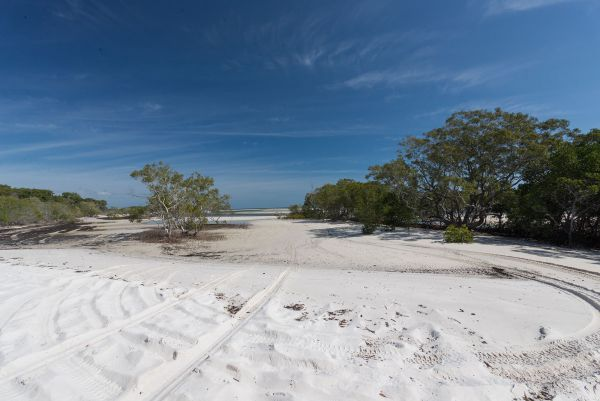 Fraser Island National Park Camping Ground