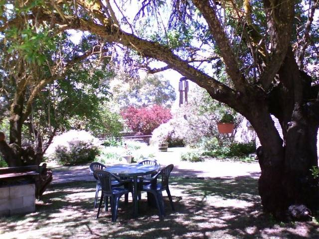 Morse Cottage - Melbourne Tourism