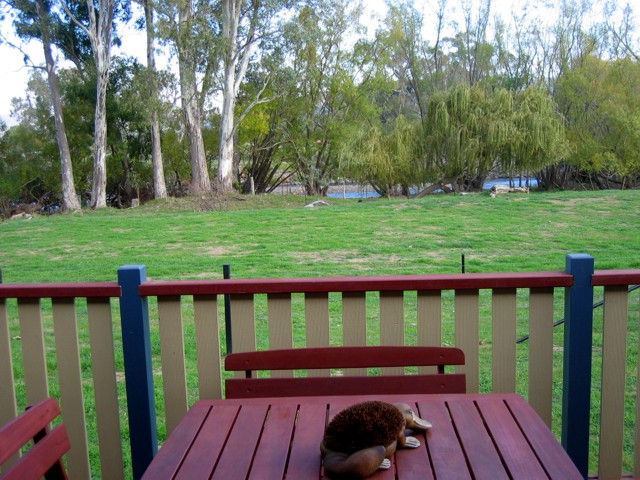 Ribbonwood Cottages - Melbourne Tourism