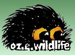OZe Wildlife - Melbourne Tourism