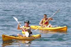 Manly Kayaks - Melbourne Tourism
