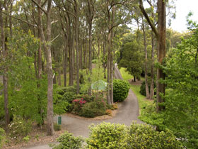 Mount Lofty Botanic Garden - Melbourne Tourism