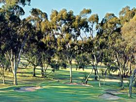 Tanunda Pines Golf Club - Melbourne Tourism