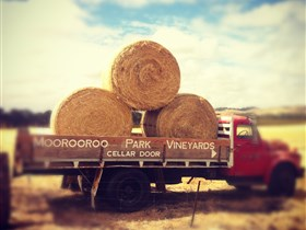 Moorooroo Park Vineyards - Melbourne Tourism