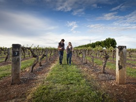 Coonawarra Wineries Walking Trail - Melbourne Tourism