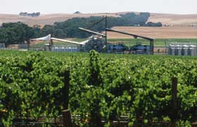 Kirrihill Wines - Melbourne Tourism