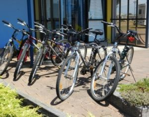 George Town to Low Head Walking and Cycling Trail - Melbourne Tourism