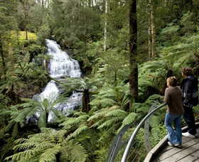 Great Otway National Park - Melbourne Tourism