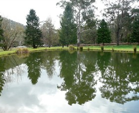 Mountain Fresh Trout and Salmon Farm - Melbourne Tourism