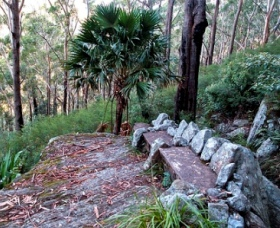 Wodi Wodi Walking Track - Melbourne Tourism