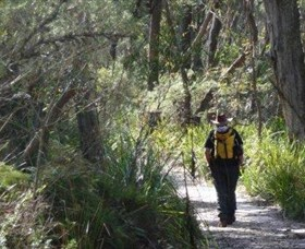 Barren Grounds Nature Reserve - Melbourne Tourism