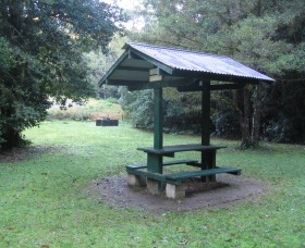 Pine Creek State Forest - Melbourne Tourism