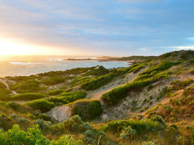 Beachport Conservation Park - Melbourne Tourism