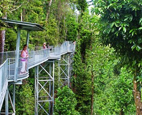 Mamu Tropical Skywalk - Melbourne Tourism