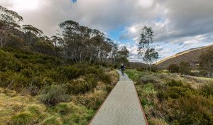 Thredbo Valley track - Melbourne Tourism