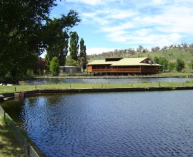 Gaden Trout Hatchery - Melbourne Tourism