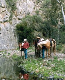 Yarramba Horse Riding - Melbourne Tourism