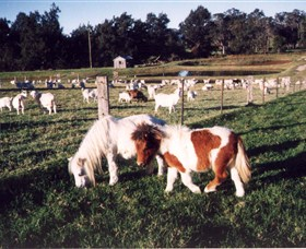 Trudgalong Farm - Melbourne Tourism