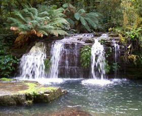 Barrington Tops National Park Walks - Melbourne Tourism
