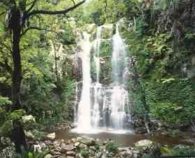 Budderoo National Park - The Falls Walk - Melbourne Tourism