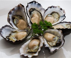 Tathra Oysters - Melbourne Tourism