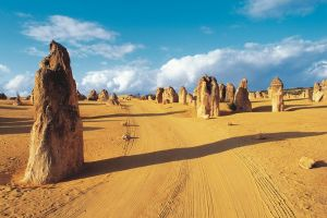 Pinnacles Desert Koalas and Sandboarding 4WD Day Tour from Perth - Melbourne Tourism