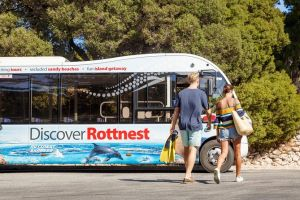 Rottnest Island Tour from Perth or Fremantle including Bus Tour - Melbourne Tourism