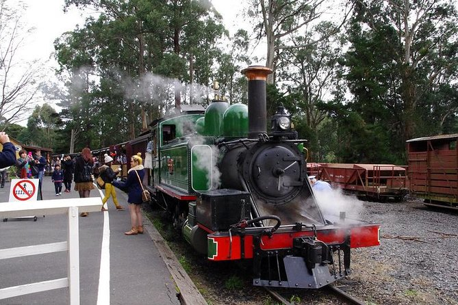Puffing Billy Train With Optional Penguin Parade or Melbourne City Tour - Melbourne Tourism