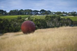 Estate to Plate Montalto Vineyard Gourmet Lunch and Wine-Tasting Tour - Melbourne Tourism