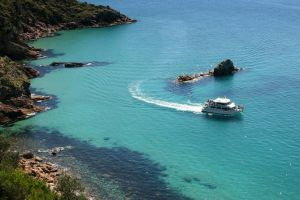 Cape Woolamai Sightseeing Cruise from San Remo - Melbourne Tourism