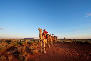 Uluru Small-Group Tour by Camel at Sunrise or Sunset - Melbourne Tourism