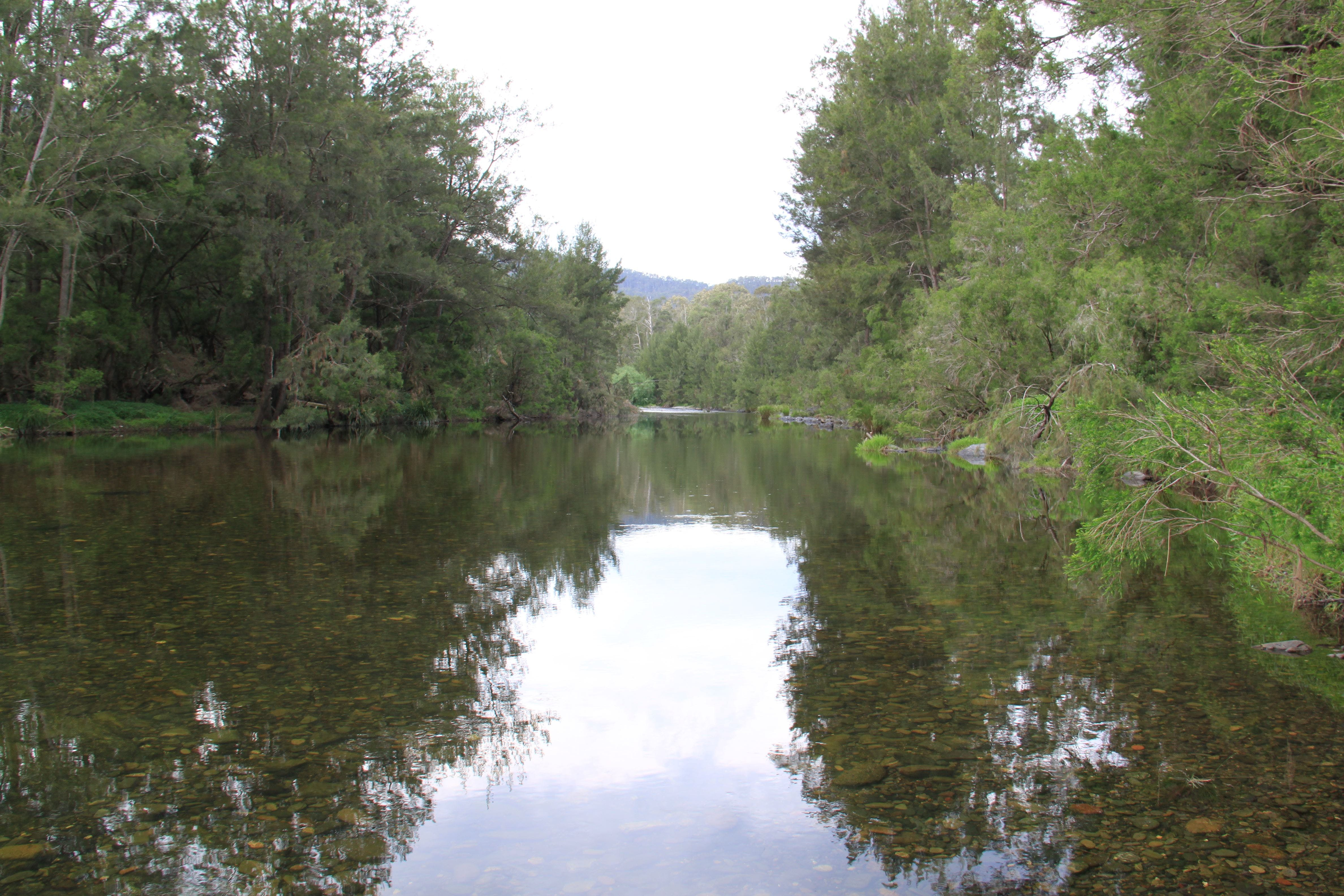 Riverside Campground and Picnic Area - Melbourne Tourism