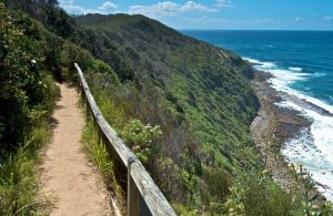 The Coast Walking Track - Melbourne Tourism