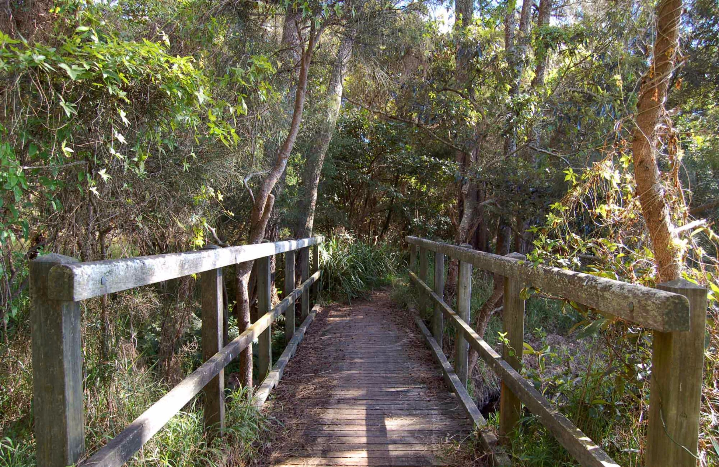 Awaba Bay Foreshore Walk - Melbourne Tourism
